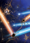light-beams-and-neurons Pulses of blue and yellow light precisely turn neurons on-and-off using genetically-targeted probes that take advantage of light-sensitive genes borrowed from primitive life-forms. Artist's rendering.  Source: Karl Deisseroth, M.D., Ph.D., Stanford University